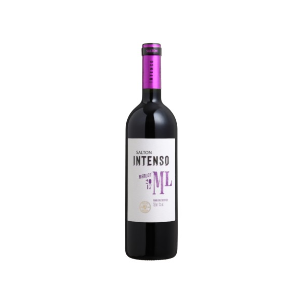 Vinho Salton Intenso Merlot 750ml